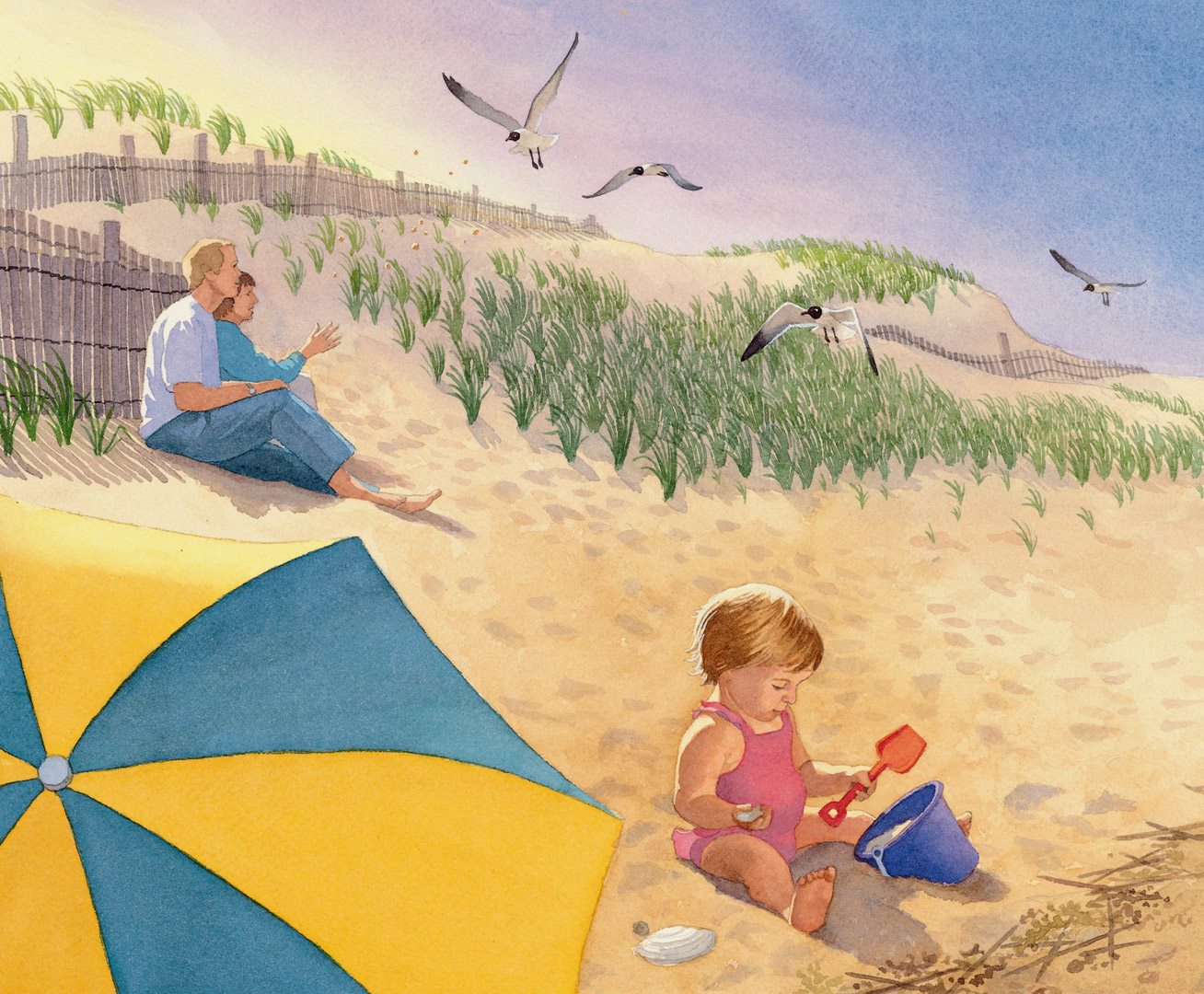 Watercolor books for kids -  Advertising Beach Baby Sleeping Bear Press F Is For First State A Delaware Alphabet Children S Book